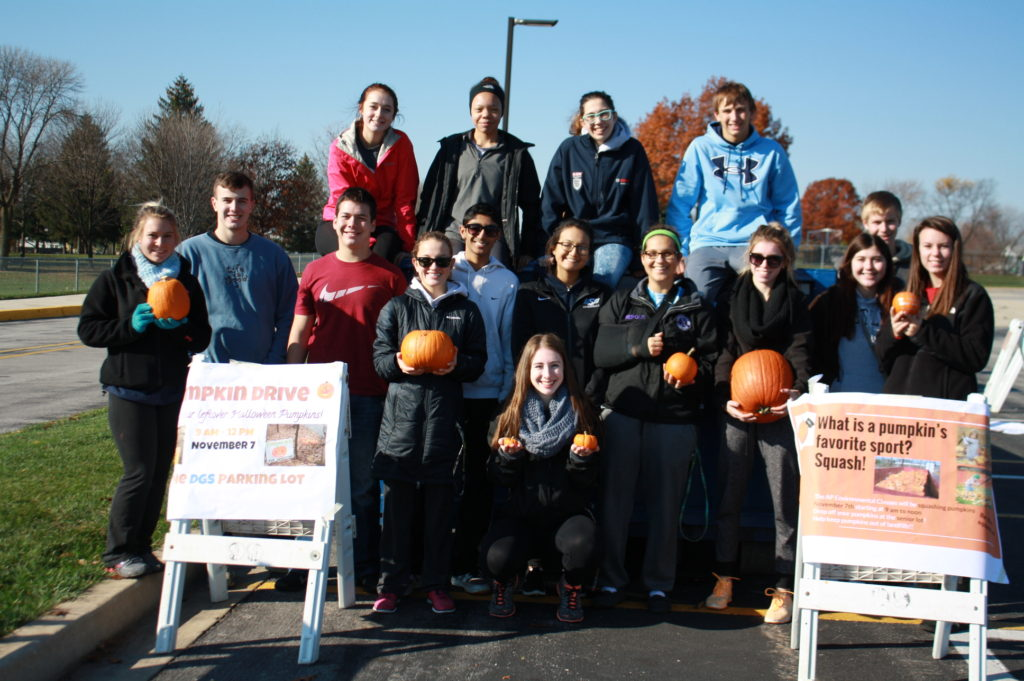DG South Pumpkins 2015