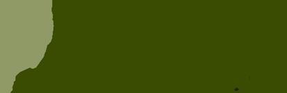 wild-ones-logo