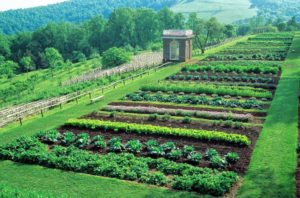 gardens-of-monticello-president-jefferson