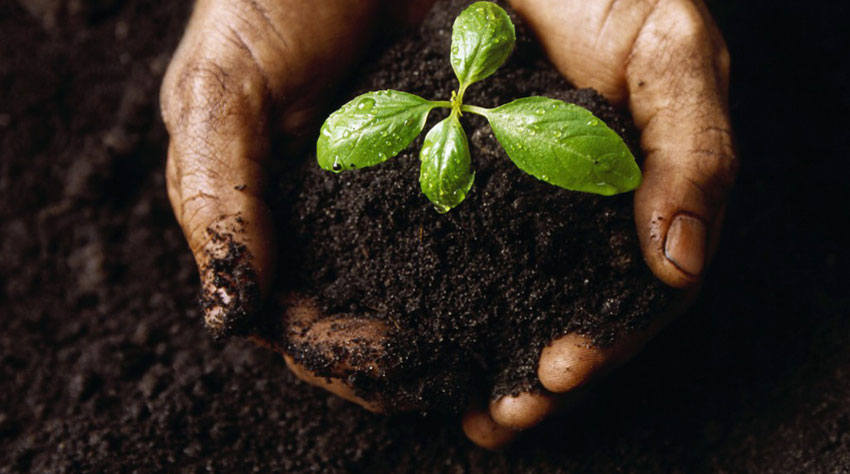 soil vital resource