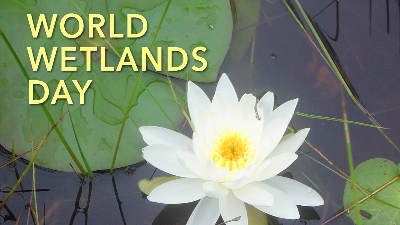 word-wetlands-day