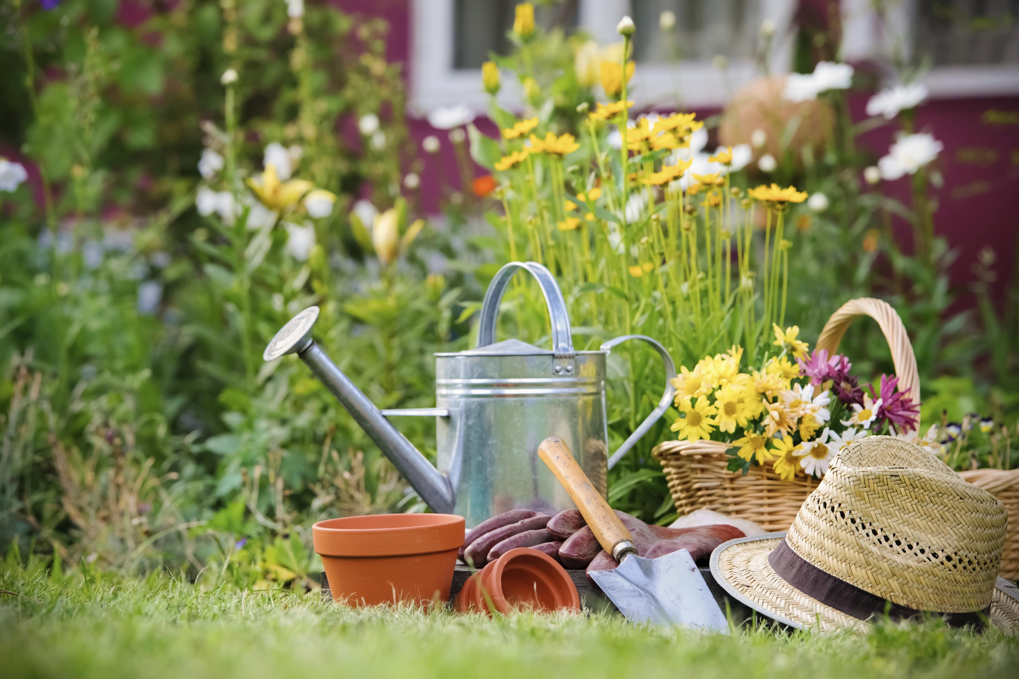 Get Your Garden Growin' Green Workshop - SCARCE