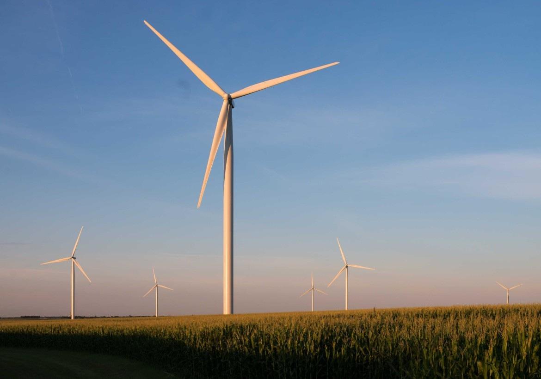 Global Wind Day Scarce