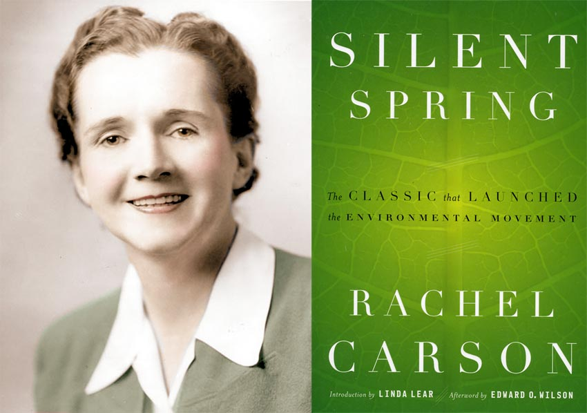 analysis of silent spring by rachel carson