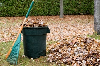 What NOT to Put in With Your Yard Waste - SCARCE